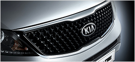 All-New Radiator Grille